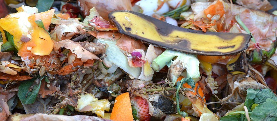 Anmälan för kompostering av matavfall