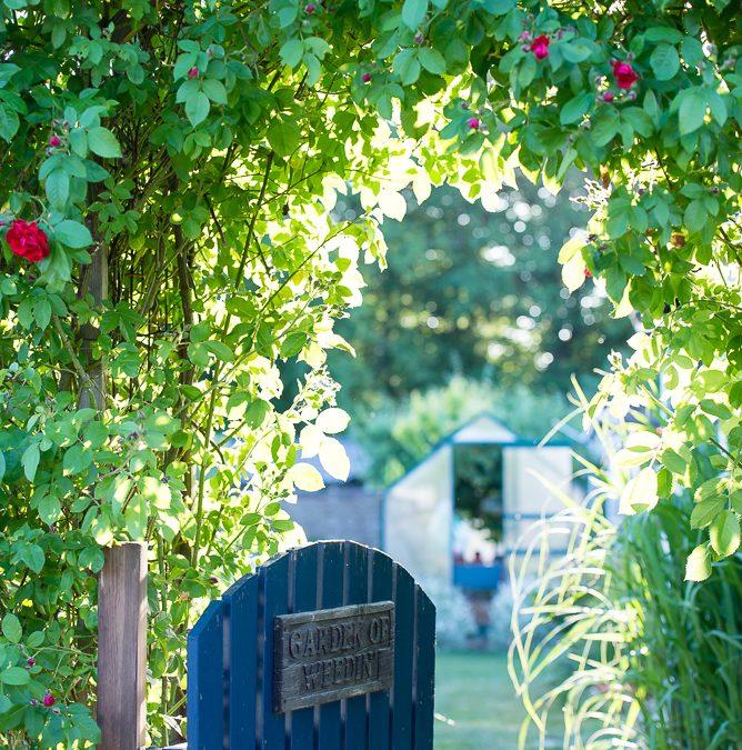 Dags för Trädgårdsrundan 16 – 17 juni