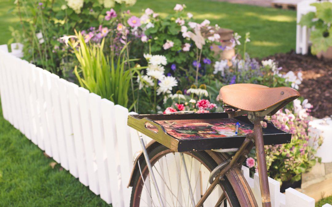 Senderöds Dinnersafari eller… cykelfest.
